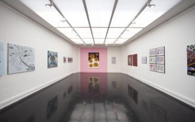 Exposition Rachid Boukharta – 05/06 au 03/04/2015 – Carré Noir, Safran, Amiens